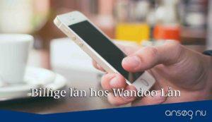 Billige lån hos Wandoo Lån