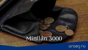Minilån 3000
