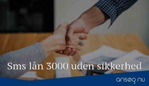 Sms lån 3000 uden sikkerhed